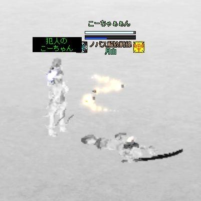 tsuki100905_18.jpg