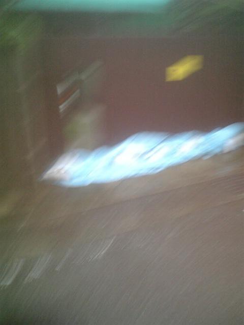 DVC00205_20100714084728.jpg