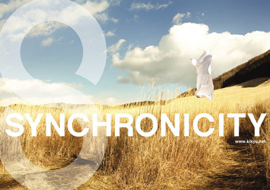 SYNCHRONICITY '11