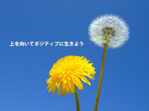 20140122234601cb7.jpg