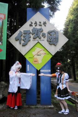 関秋桜10