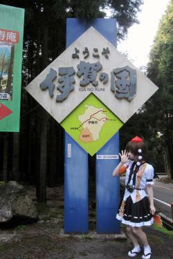 関秋桜09