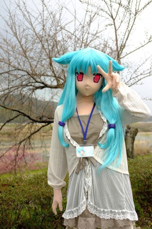 桜ロケ12