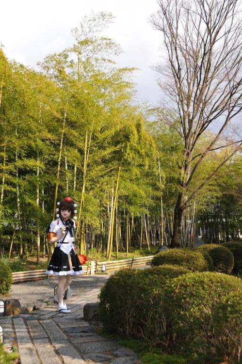 桜ロケ31