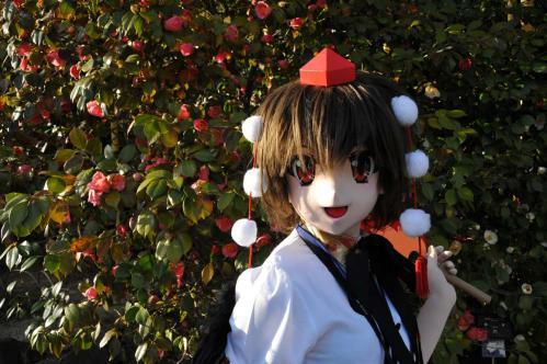 桜ロケ43
