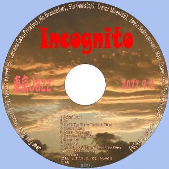 incognito_convert_20120406103139.jpg