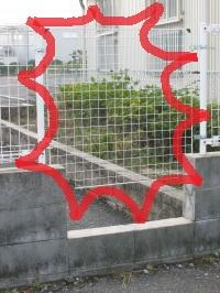 010_convert_20111025204504.jpg