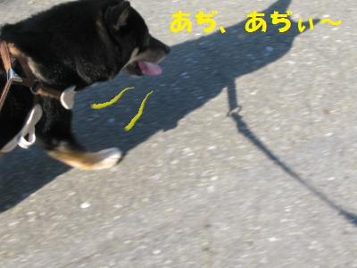 020_convert_20110929144320.jpg