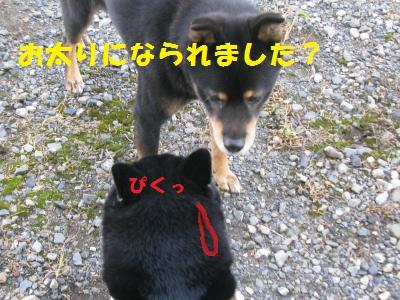 023_convert_20110929121630.jpg