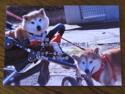 032_convert_20111003132425.jpg