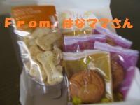 056_convert_20120108233433.jpg