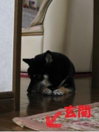 071_convert_20111201092011.jpg