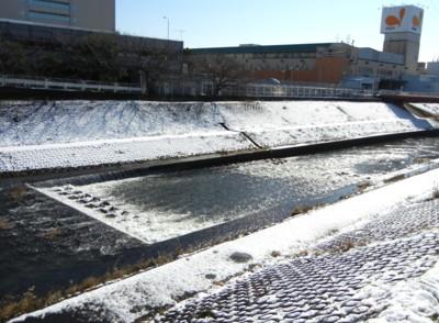 柏尾川の雪