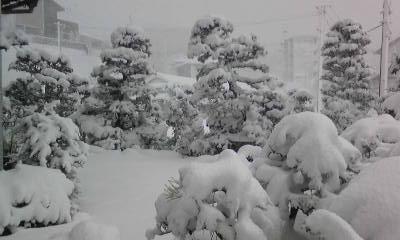 CAS3UAQ8大雪