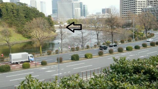 彦根藩屋敷から見た桜田門