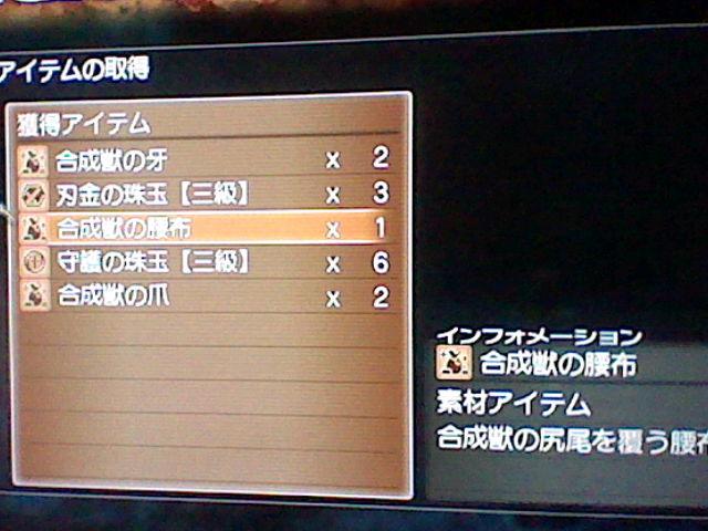HNI_0016_20111210134420.jpg