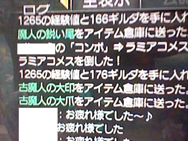 HNI_0016a.jpg