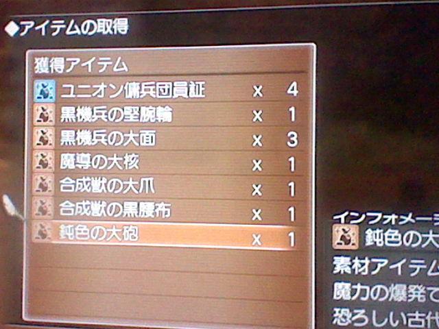 HNI_0030_20111203173359.jpg