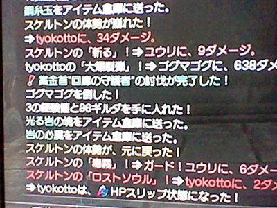 HNI_0070_R_20120410202645.jpg