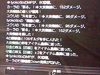 HNI_0073_R_20120410202643.jpg
