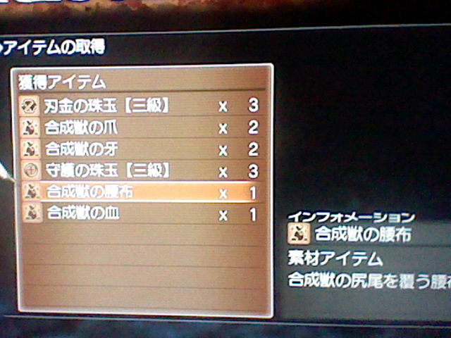 HNI_0094_20111121133706.jpg