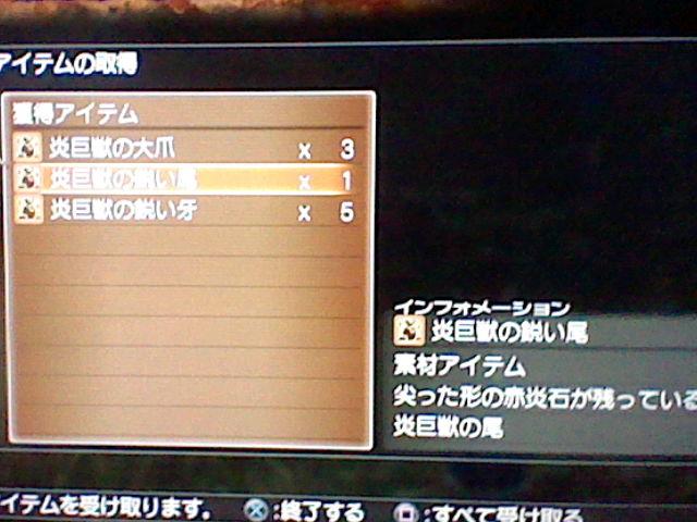 HNI_0097_20111201140654.jpg
