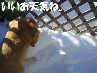 110219_blogubu2.jpg