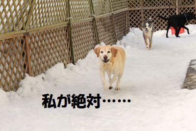 110221_blogubu5.jpg