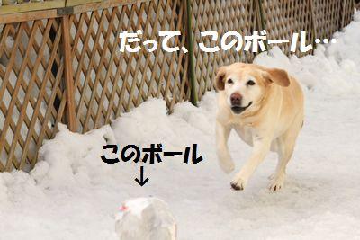 110221_blogubu7.jpg