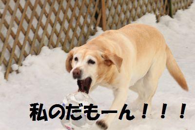 110221_blogubu8.jpg