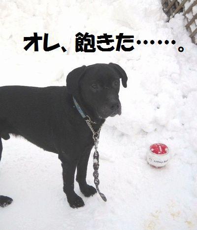 110305_blogjun1.jpg