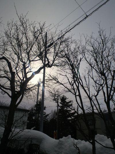 110306_blogkeshiki.jpg