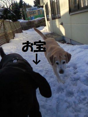 110318_blogubujun3.jpg