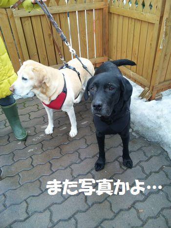 110320_blogjun1.jpg