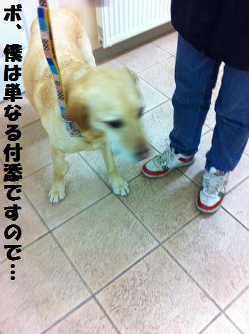 110518blog_tsubu2.jpg