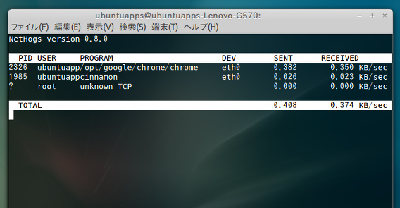 NetHogs Ubuntu ネットワークモニタリングツール