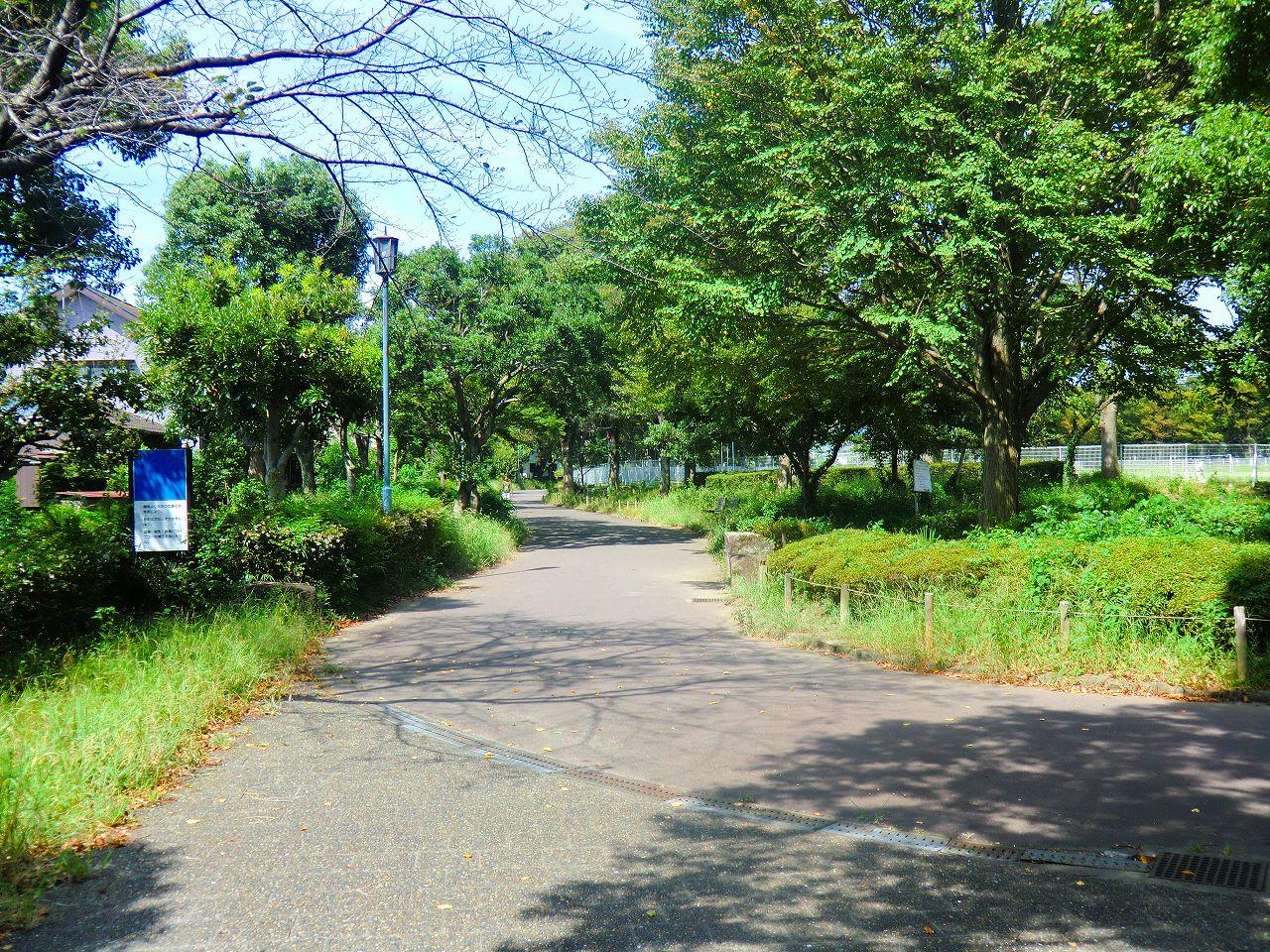 2011_0916_102741-CIMG1601.jpg