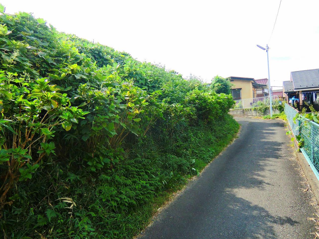 2011_0916_142425-CIMG1710.jpg