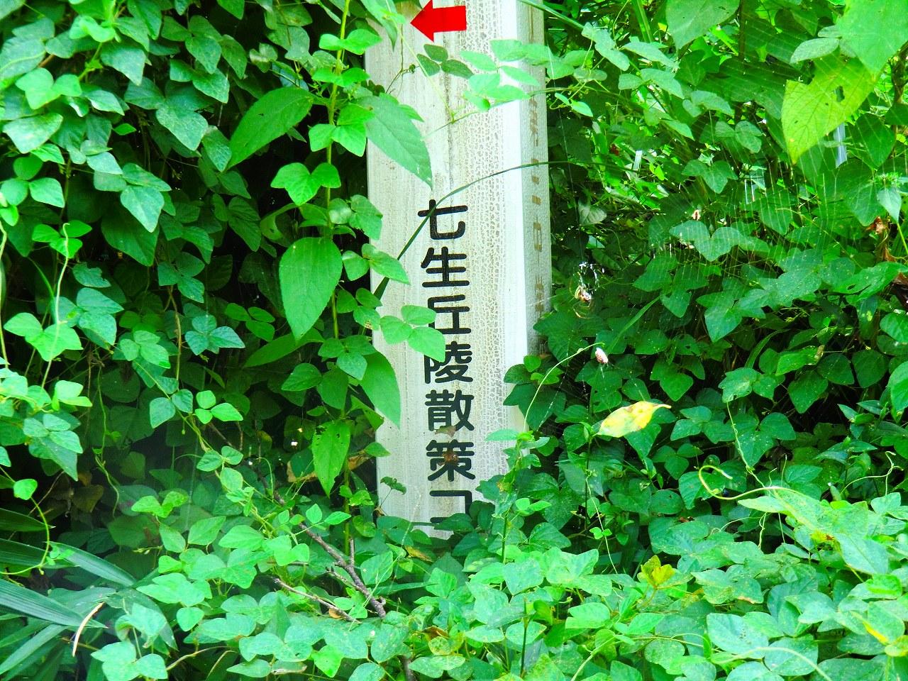 2011_0916_144014-CIMG1716.jpg