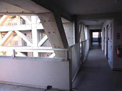 lime201062
