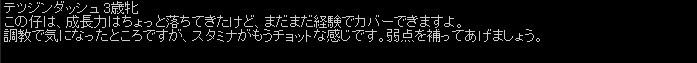 2011y06m25d_075530171.jpg
