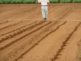 種まきのための線引き