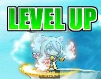 Maple130224_200722.jpg