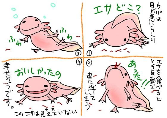 20090807esa_no_tabekata_fc2.jpg