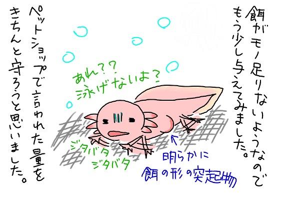 20090814tabesugi_fc2.jpg