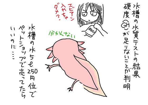 20090818suisitu_fc2.jpg