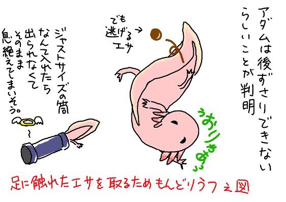 20090826mondori_utu_fc2.jpg