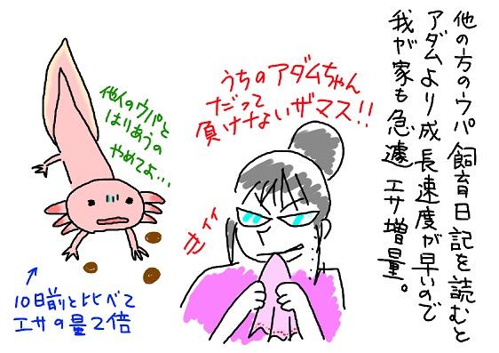 20090904kyouikumama_fc2.jpg