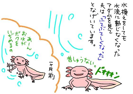 20090914hutebutesii_fc2.jpg