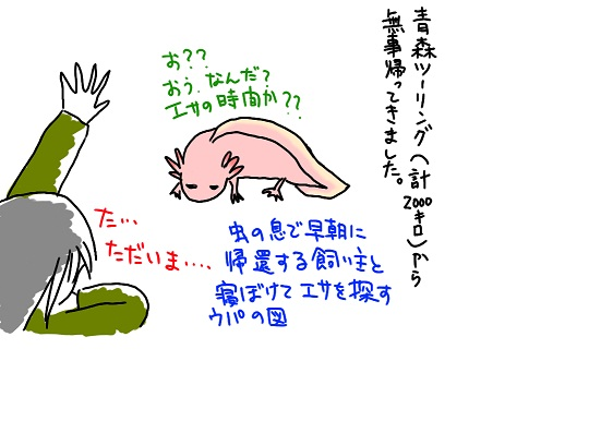 20090923tadaima_fc2.jpg